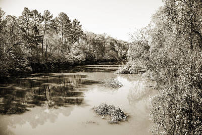 Flooding Digital Art - Sabine River Near Big Sandy Texas Photograph Fine Art Print 4081 by M K  Miller