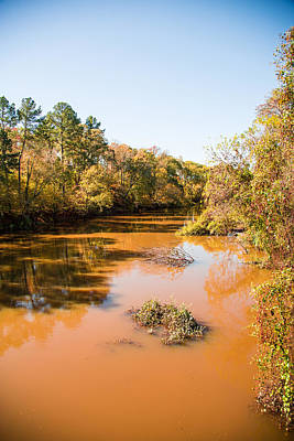 Flooding Digital Art - Sabine River Near Big Sandy Texas Photograph Fine Art Print 4082 by M K  Miller