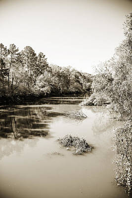 Flooding Digital Art - Sabine River Near Big Sandy Texas Photograph Fine Art Print 4083 by M K  Miller