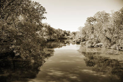 Flooding Digital Art - Sabine River Near Big Sandy Texas Photograph Fine Art Print 4089 by M K  Miller