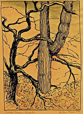 Sabino Canyon Couple - Old Gold Art Print