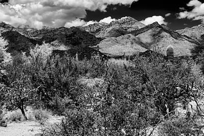 Photograph - Sabino Canyon No56 by Mark Myhaver