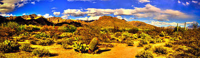Photograph - Sabino Canyon Panorama No. 1 by Roger Passman