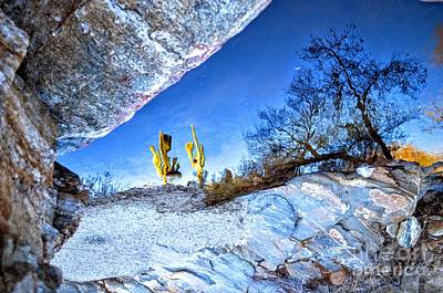 Sabino Canyon Reflection In Pool Print by Rincon Road Photography By Ben Petersen