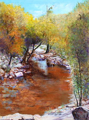 Sabino Canyon Scenes Art Print