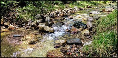 Photograph - Sabino Creek by Elaine Malott