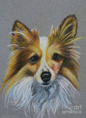 Pastel - Sable And White by Susan Herber