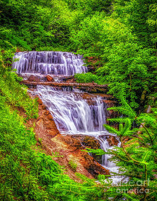 Art Print featuring the photograph Sable Falls by Nick Zelinsky