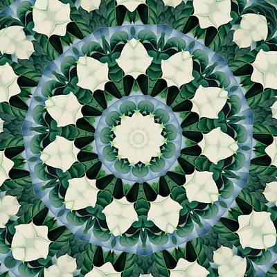 Digital Art - Sacramento Green And Cerulean Blue Mandala by Tracey Harrington-Simpson