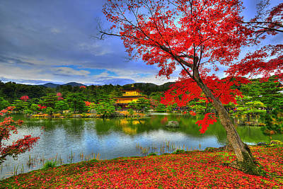 Red Leaves Photograph - Sacred Autumn by Midori Chan