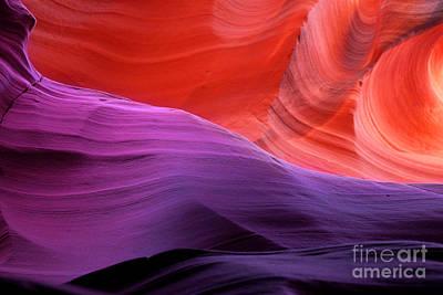 Photograph - Sacred Colors by Jason Abando