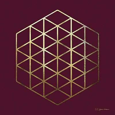 Digital Art - Sacred Geometry - Philosopher's Stone No. 2 by Serge Averbukh