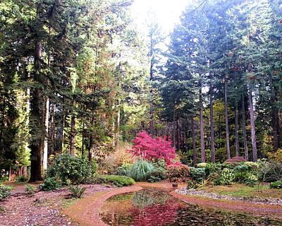 Sacred Grove Original by Tony DiNitto