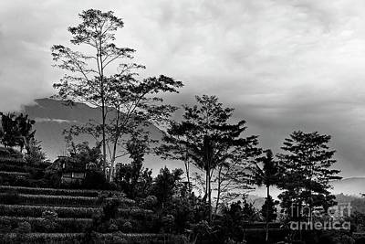 Photograph - Sacred Gunung Agung Mountain Bali by Craig Lovell