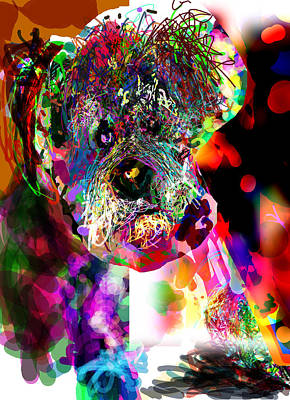 Miniature Schnauzer Digital Art - Sad Dog by James Thomas