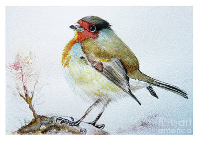 Sad Robin Art Print