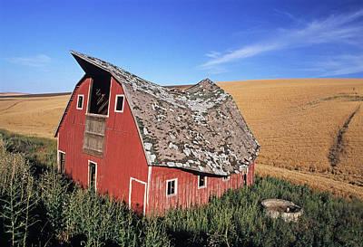 Photograph - Saddle Barn by Doug Davidson