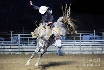 Photograph - Saddle Bronc by Nicki McManus