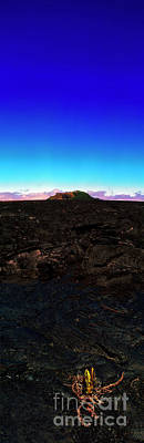 Photograph - Saddle Road Humuula Lava Field Big Island Hawaii  by Tom Jelen
