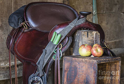 Photograph - Saddle Time by Joann Long