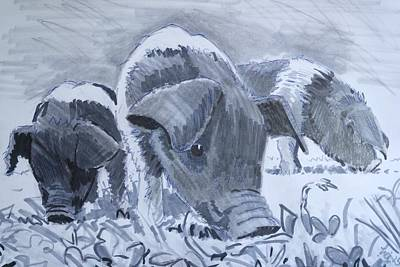 Drawing - Saddleback Piglets by Mike Jory