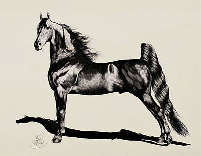 Drawing - Saddlebred Perfection by Cheryl Poland