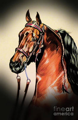 Drawing - Saddlebreds by Cheryl Poland