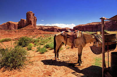 Photograph - Saddled Horse At John Ford's Point by Carolyn Derstine