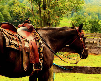 Photograph - Saddled Up by James DeMers