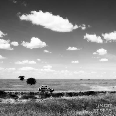 Photograph - Safari Sky by Chris Scroggins