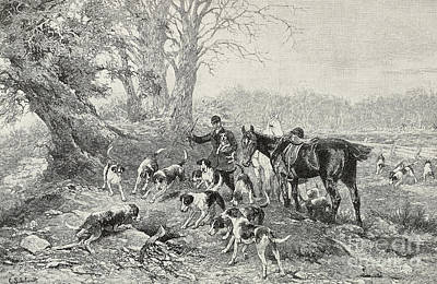 Fox Drawing - Safe  Dogs And Hunters Surrounding Lair by Carl Suhrlandt