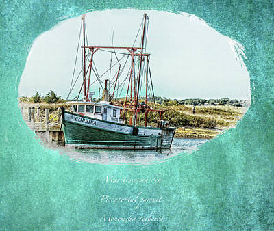 Photograph - Safe Harbor Oval by Constantine Gregory
