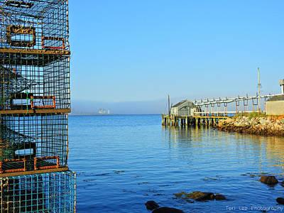 Photograph - Safe Harbor by Teri Ridlon