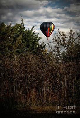 Photograph - Safe Landing by Fred Lassmann