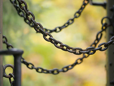 Photograph - Safety Chains by Richard Reeve