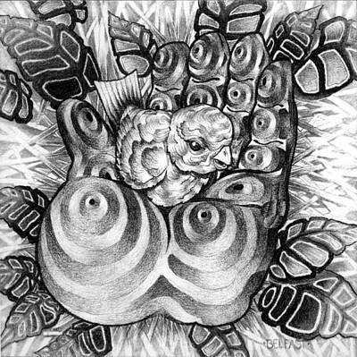 Drawing - Safty Nest by Myron  Belfast