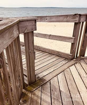 Sultry Plants - Sag Harbor Wooden Beach Path by Elizabeth Deering
