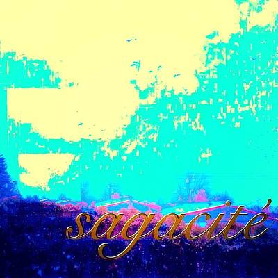 Digital Art - Sagacite Sagacity by Contemporary Luxury Fine Art