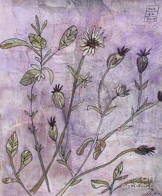 Mixed Media - Sage And Rose Campion by Janyce Boynton