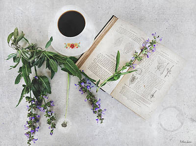 Photograph - Sage Coffee by Anna Louise