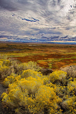 Photograph - Sagebrush Country by Kunal Mehra