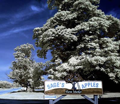 Sage's Apple Orchard Chardon Ohio Art Print