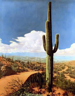 Photograph - Saguaro Cactus 2 by Marilyn Hunt