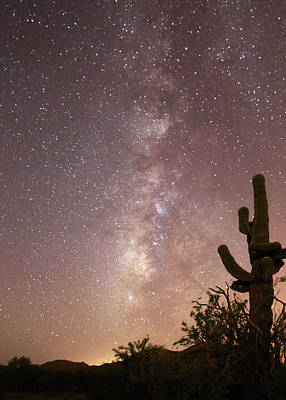 Photograph - Saguaro Cactus And Milky Way by Jean Clark