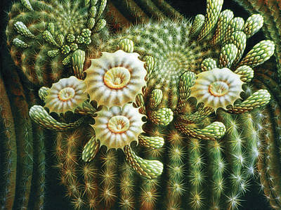 Painting - Saguaro Cactus Blossoms by James Larkin