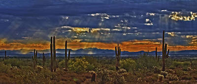 Saguaro Dawn Art Print by Kenneth Roberts