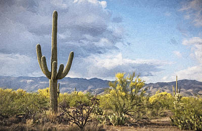 Photograph - Saguaro Landscape by Jim Vallee