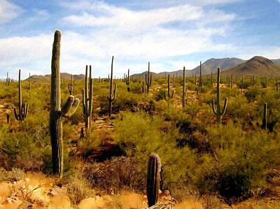 Photograph - Saguaro National Park by Kurt Van Wagner