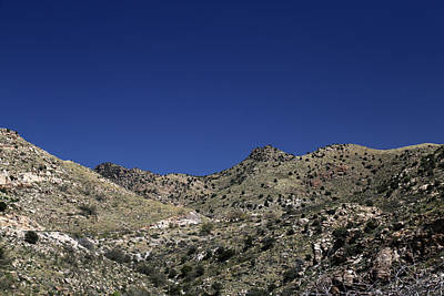 Photograph - Saguaro National Park Landscape 3 by Mary Bedy