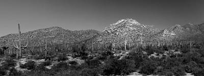 Photograph - Saguaro National Park Panorama 2 Bw by Mary Bedy